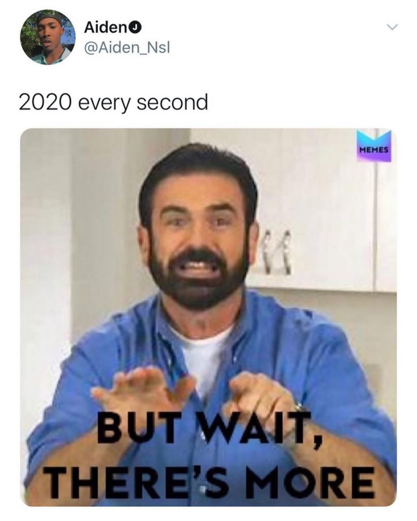 2020 Meme - But wait, there's more