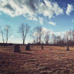 Livermore Cemetery, PA // 2020 Copyright Meghan Tutolo